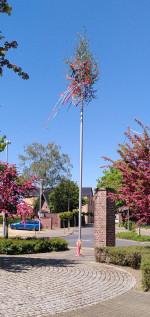 Weiterlesen: Neuer Maibaum für Schierwaldenrath